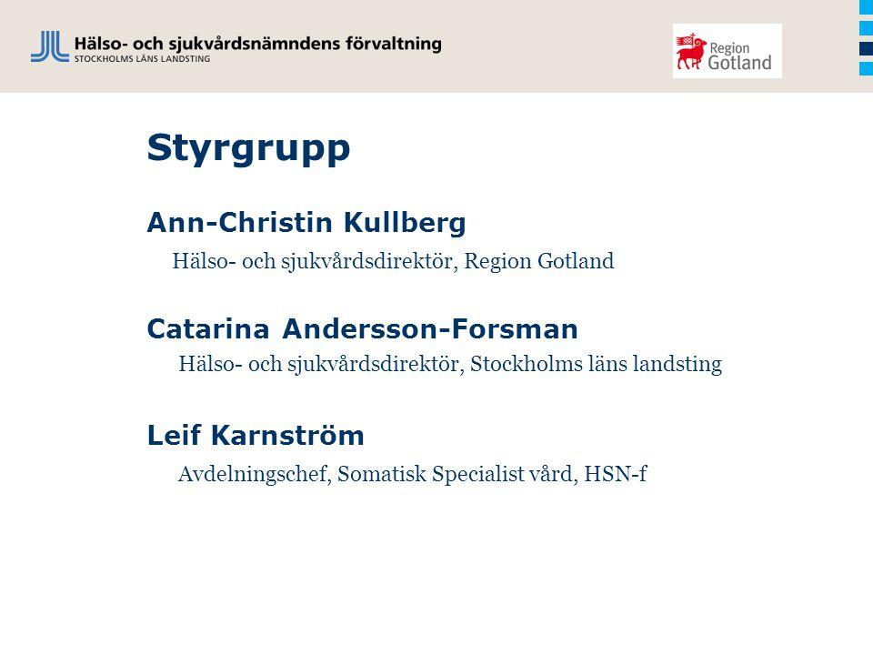 Styrgrupp Ann-Christin Kullberg