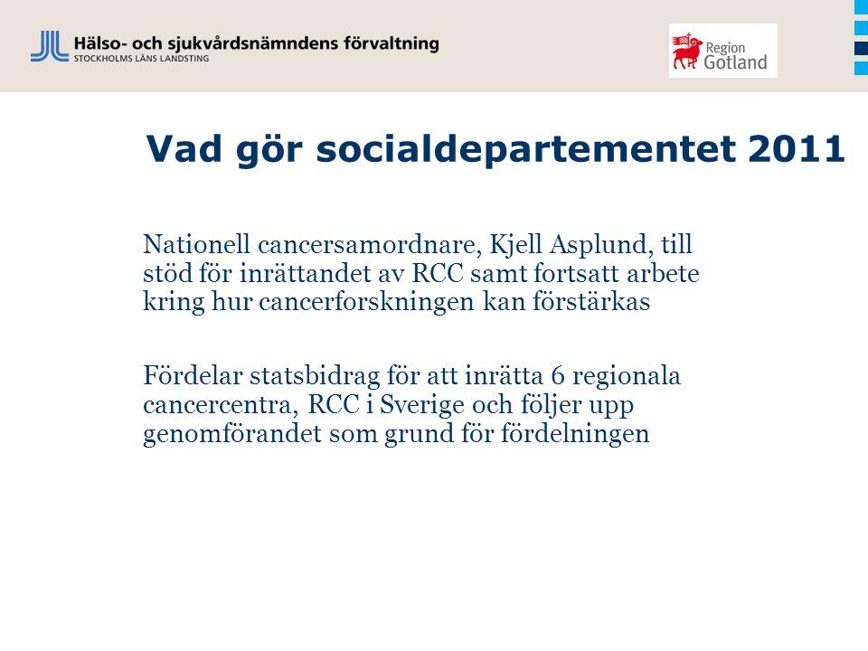 Vad gör socialdepartementet 2011