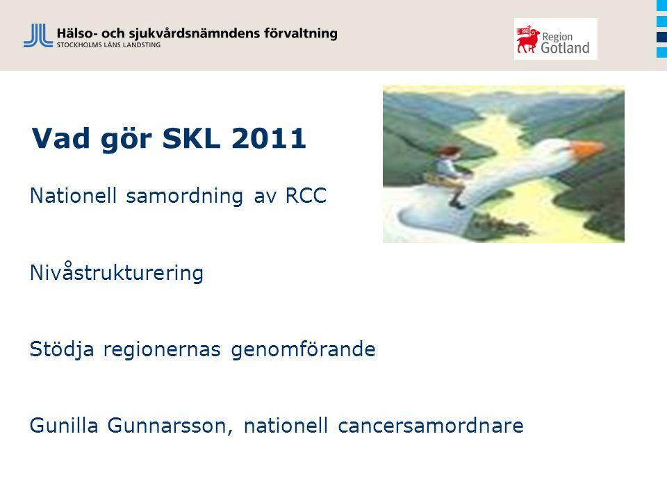Vad gör SKL 2011 Nationell samordning av RCC Nivåstrukturering