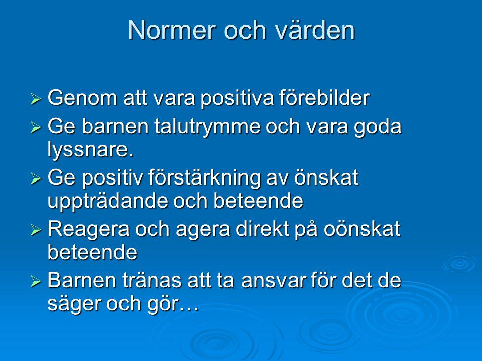 Normer och värden Genom att vara positiva förebilder