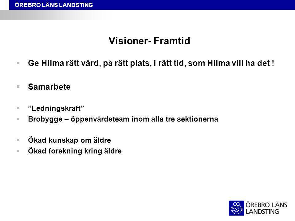 Visioner- Framtid Ge Hilma rätt vård, på rätt plats, i rätt tid, som Hilma vill ha det ! Samarbete.