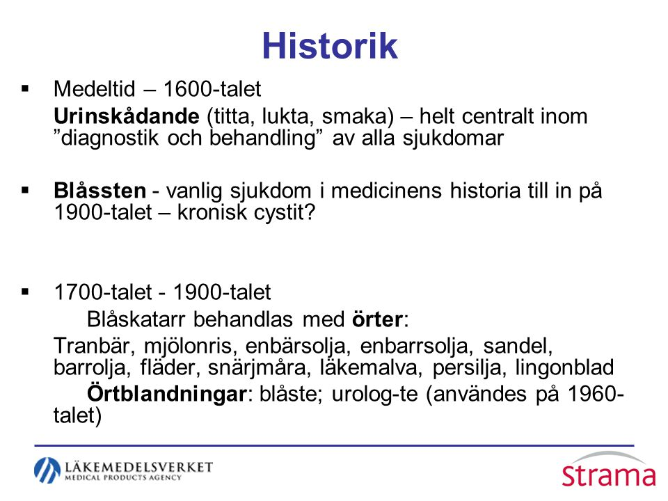 Historik Medeltid – 1600-talet