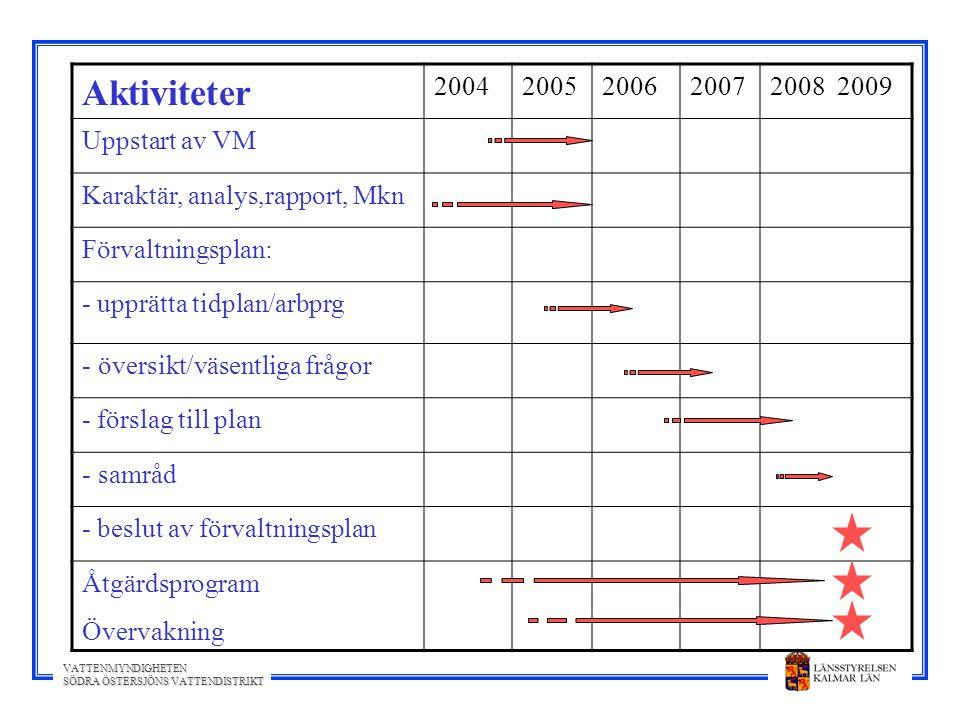 Aktiviteter 2004 2005 2006 2007 2008 2009 Uppstart av VM