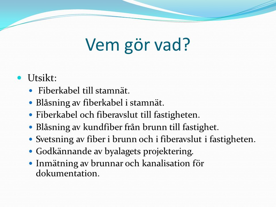 Vem gör vad Utsikt: Fiberkabel till stamnät.