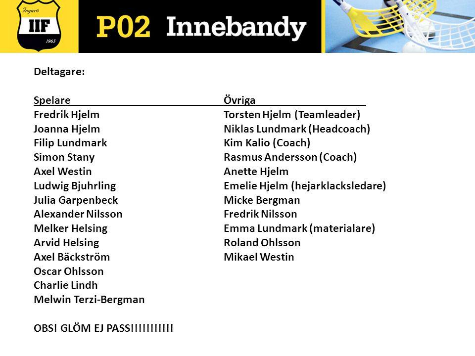 Deltagare: Spelare Övriga. Fredrik Hjelm Torsten Hjelm (Teamleader) Joanna Hjelm Niklas Lundmark (Headcoach)