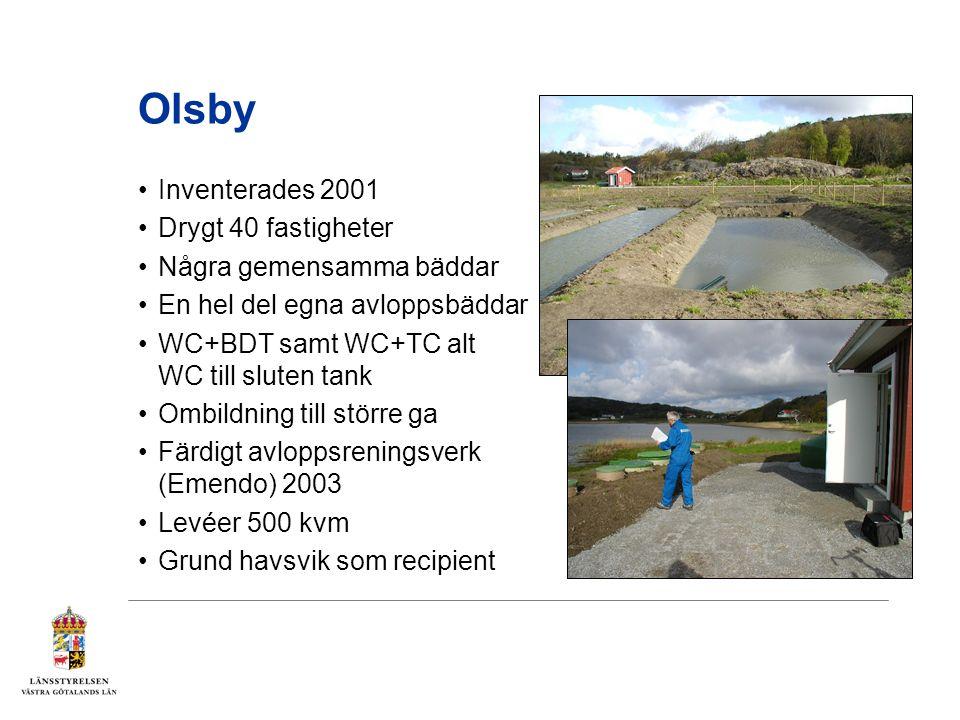 Olsby Inventerades 2001 Drygt 40 fastigheter Några gemensamma bäddar