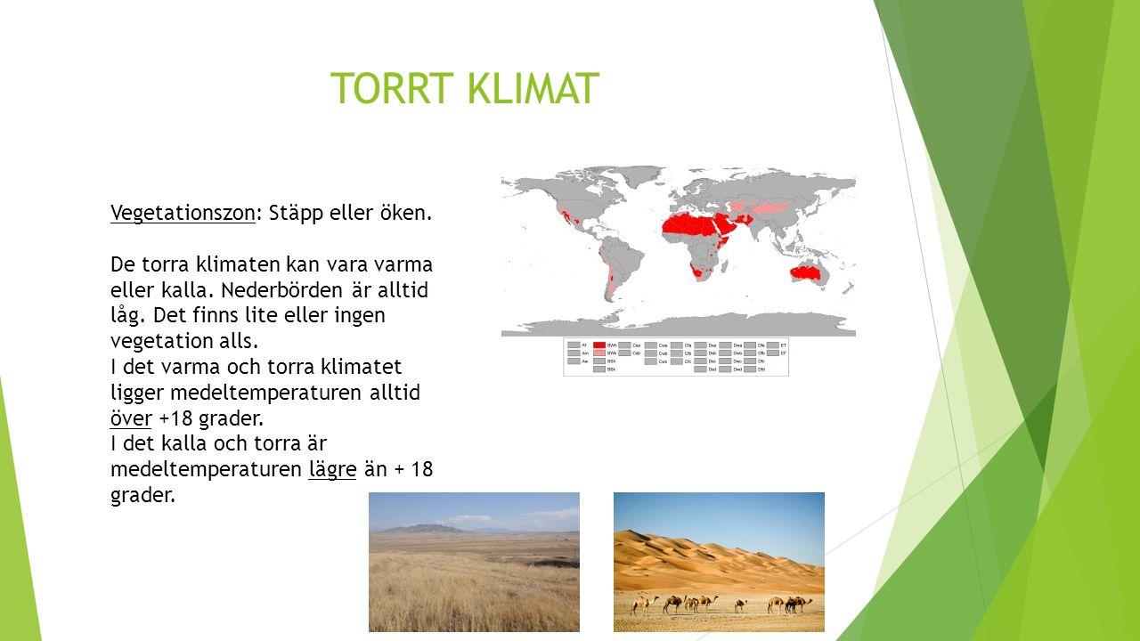 TORRT KLIMAT Vegetationszon: Stäpp eller öken.