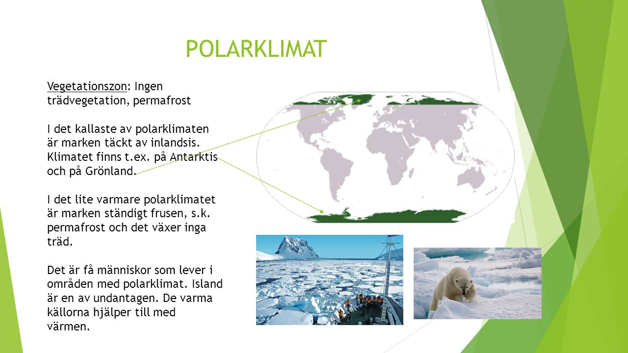 POLARKLIMAT Vegetationszon: Ingen trädvegetation, permafrost