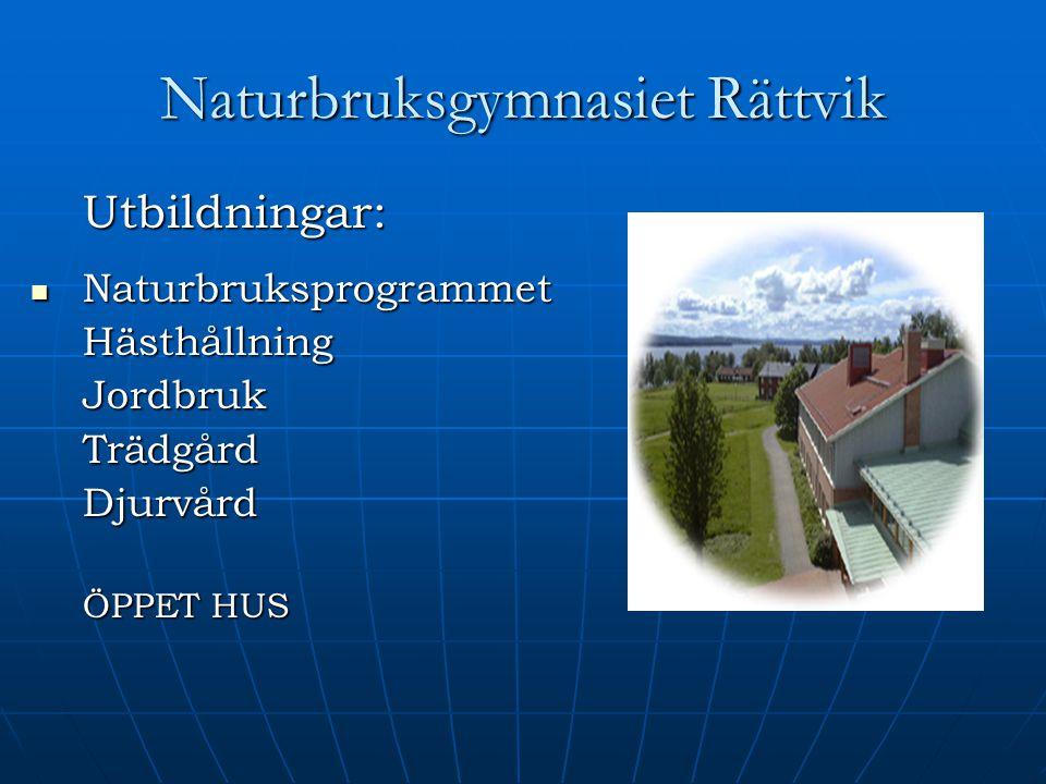 Naturbruksgymnasiet Rättvik