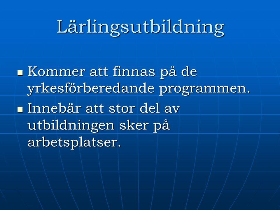Lärlingsutbildning Kommer att finnas på de yrkesförberedande programmen.