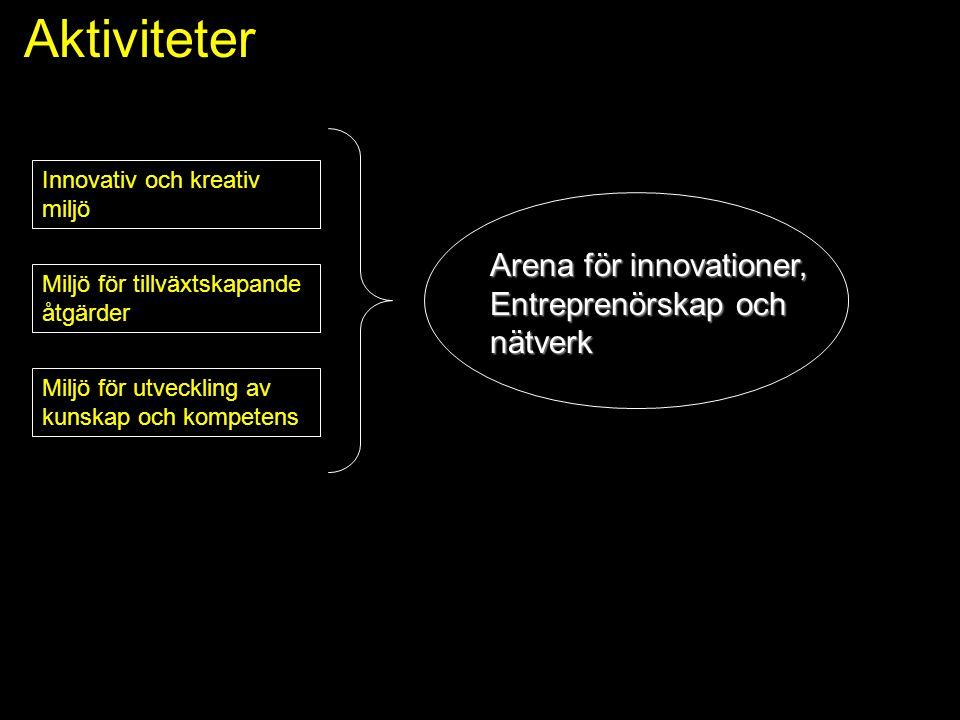 Aktiviteter Arena för innovationer, Entreprenörskap och nätverk