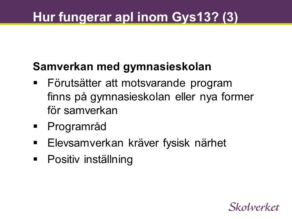Hur fungerar apl inom Gys13 (3)