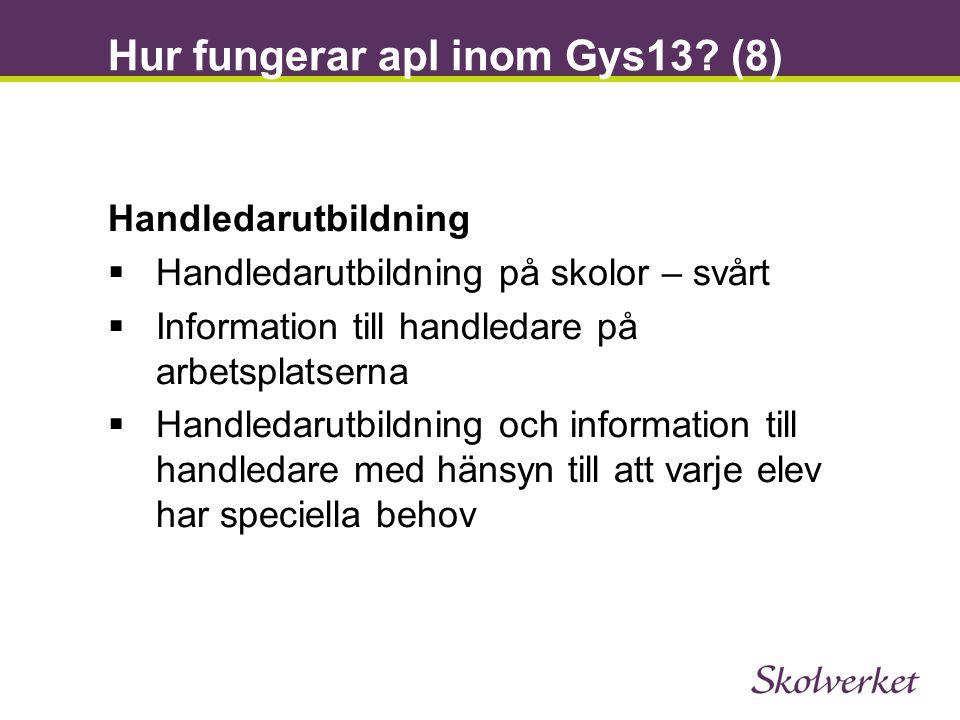 Hur fungerar apl inom Gys13 (8)