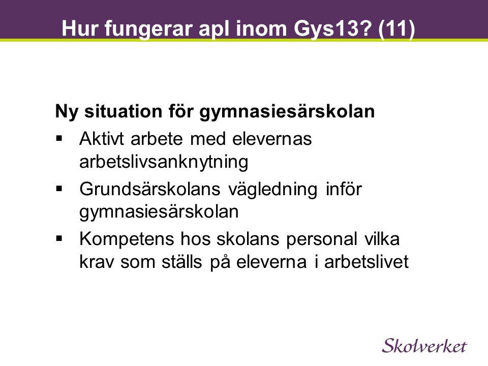 Hur fungerar apl inom Gys13 (11)