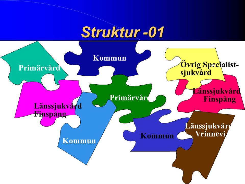 Struktur -01 Primärvård Kommun Länssjukvård Finspång Övrig Specialist-