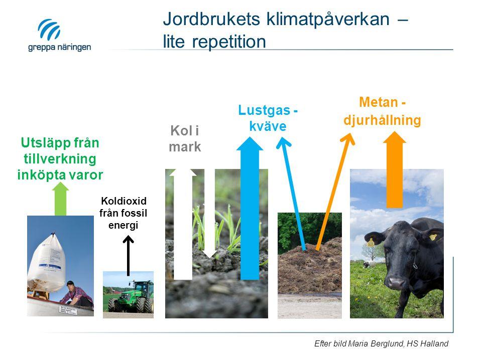 Jordbrukets klimatpåverkan – lite repetition