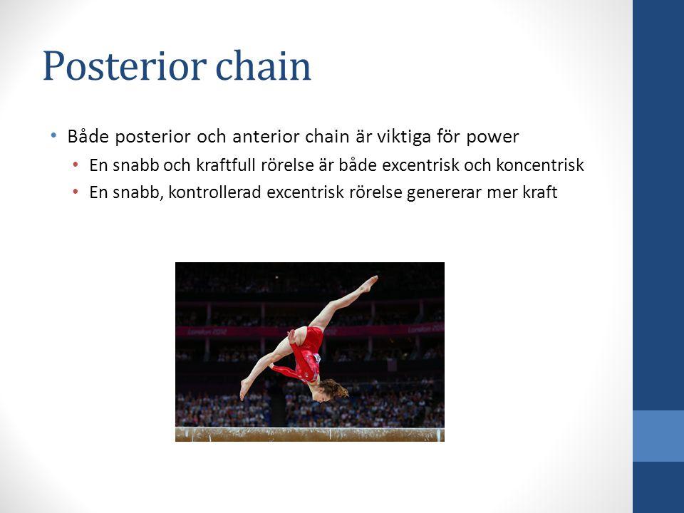 Posterior chain Både posterior och anterior chain är viktiga för power