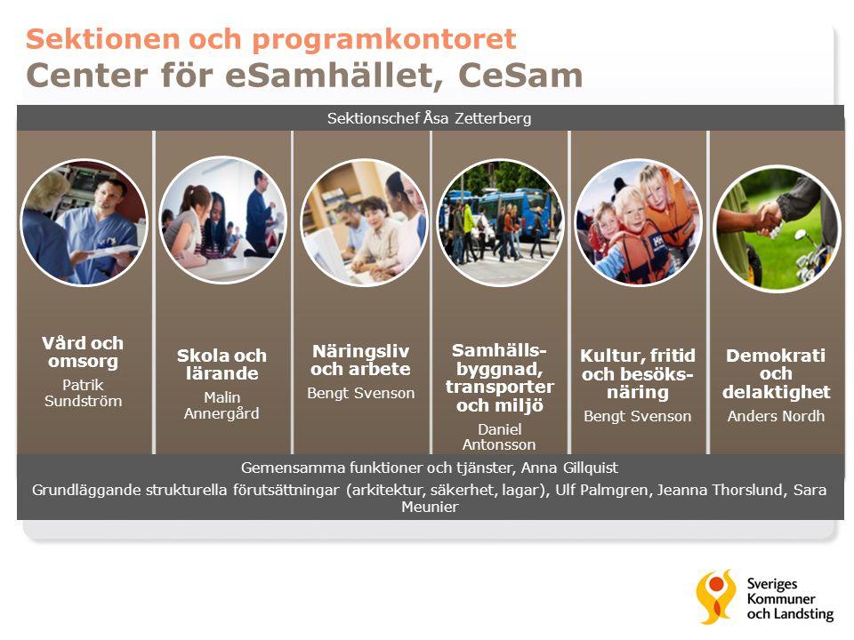 Sektionen och programkontoret Center för eSamhället, CeSam