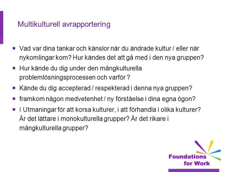 Multikulturell avrapportering