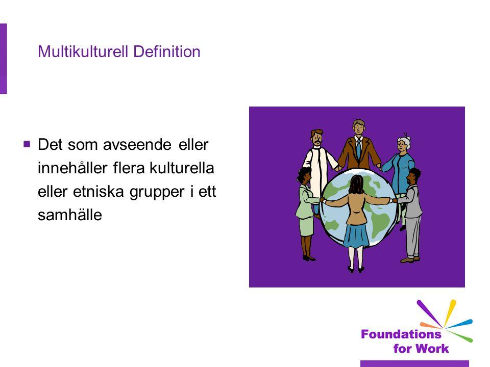 Multikulturell Definition