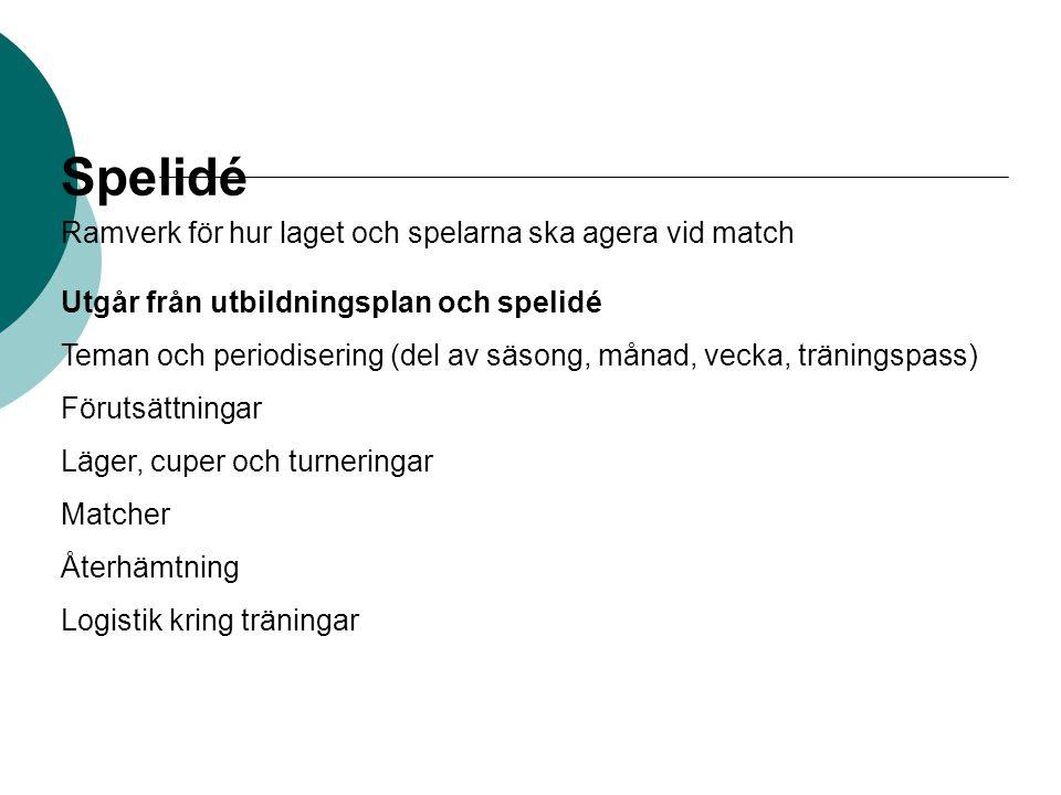 Spelidé Ramverk för hur laget och spelarna ska agera vid match