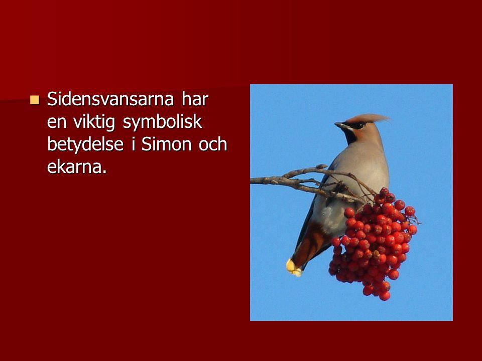Sidensvansarna har en viktig symbolisk betydelse i Simon och ekarna.