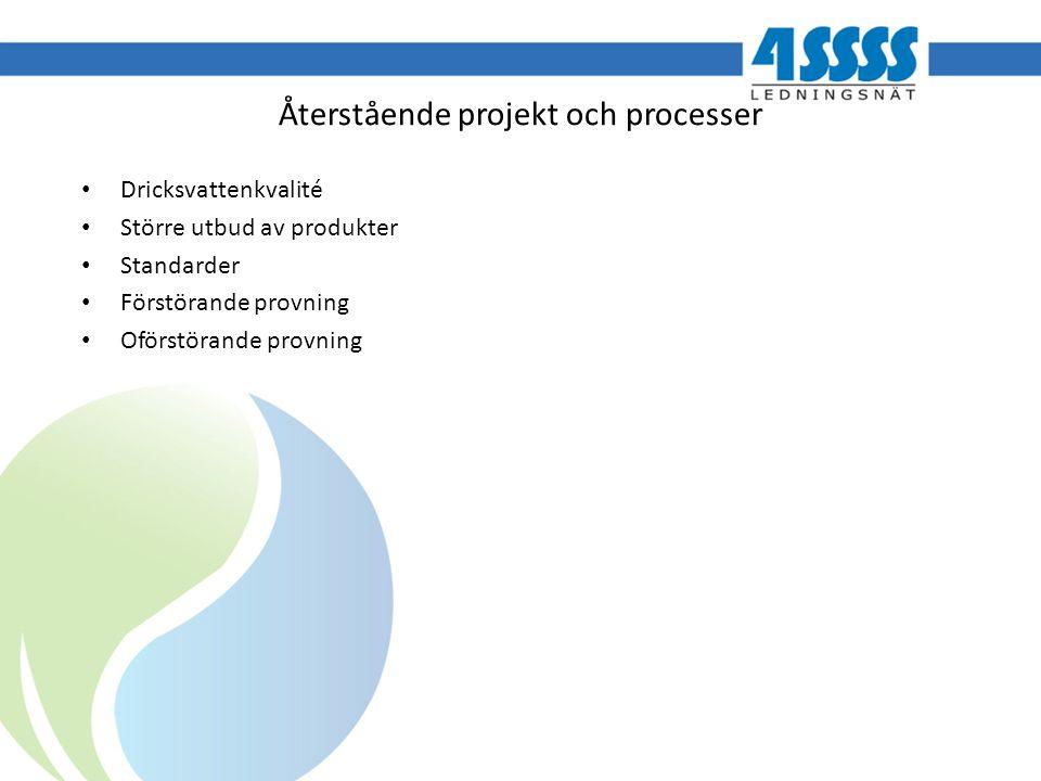Återstående projekt och processer