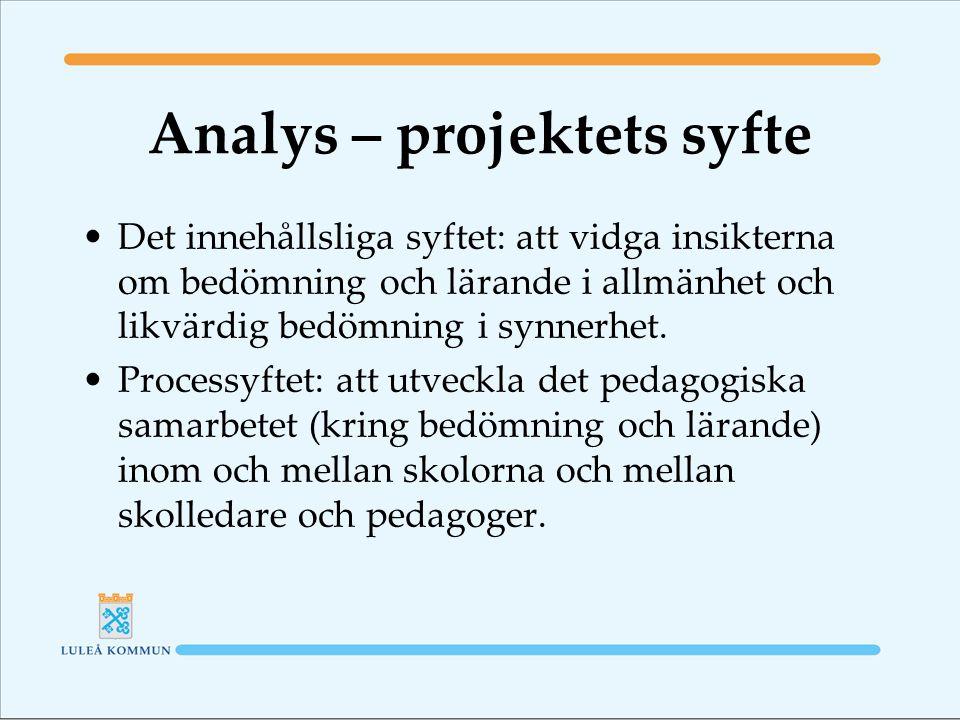 Analys – projektets syfte