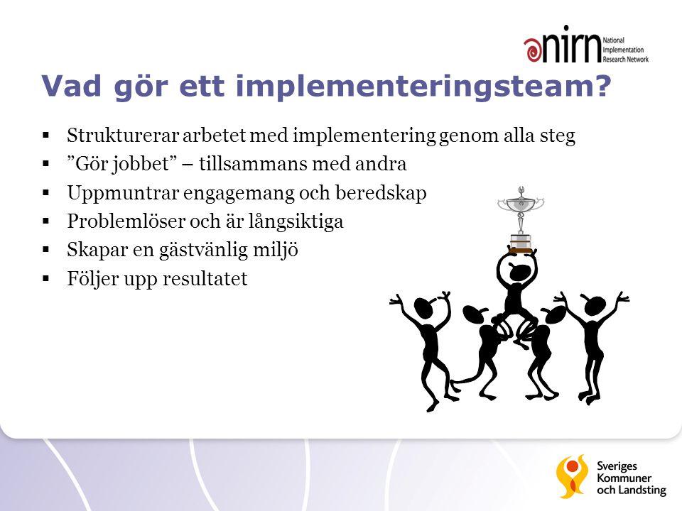 Vad gör ett implementeringsteam