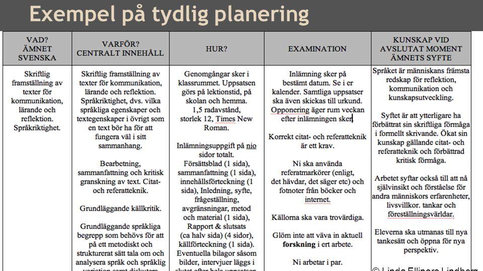 Mål för ett språkutvecklande arbetssätt: