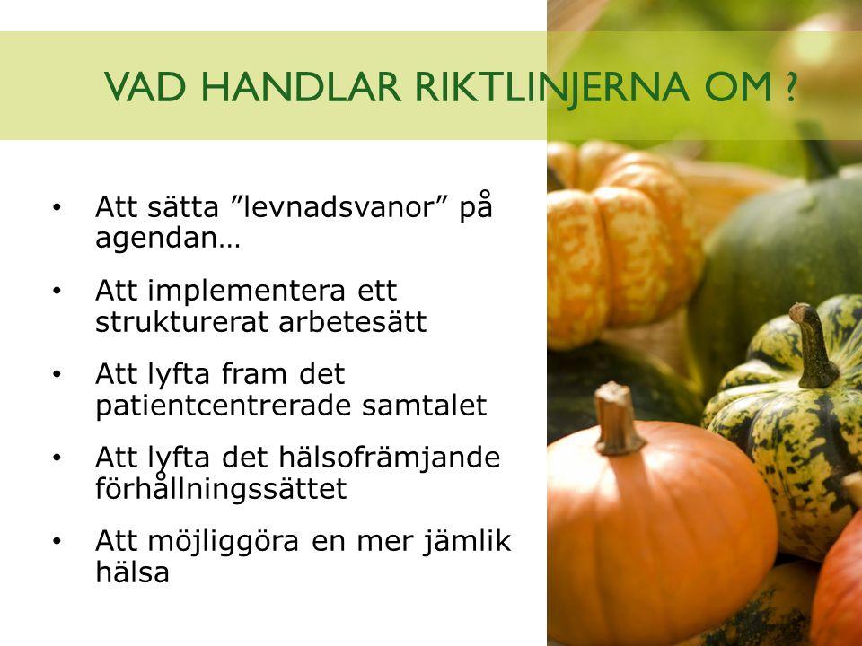 VAD HANDLAR RIKTLINJERNA OM