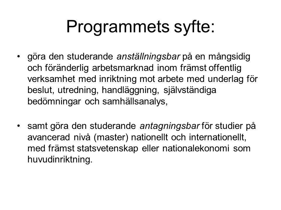 Programmets syfte: