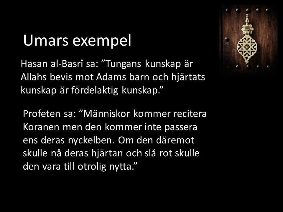 Umars exempel Hasan al-Basrî sa: Tungans kunskap är Allahs bevis mot Adams barn och hjärtats kunskap är fördelaktig kunskap.