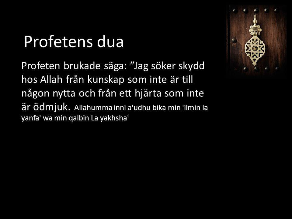 Profetens dua