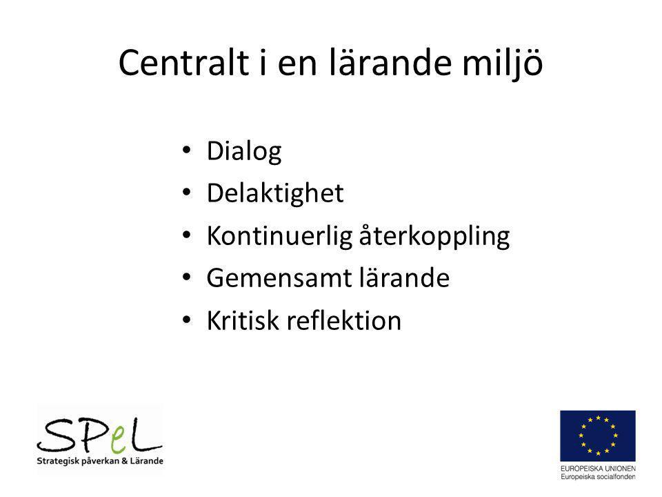 Centralt i en lärande miljö