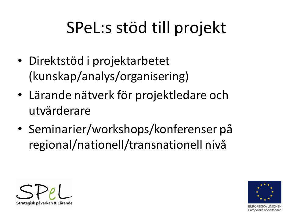 SPeL:s stöd till projekt