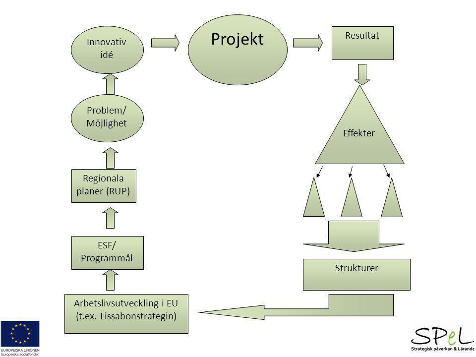 Projekt Resultat Innovativ idé Problem/ Möjlighet Effekter
