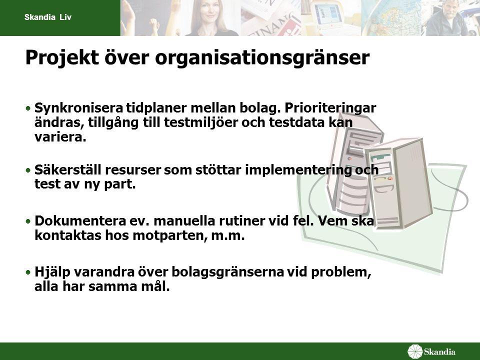 Projekt över organisationsgränser