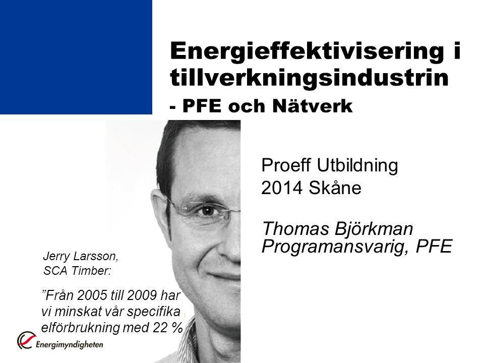 Energieffektivisering i tillverkningsindustrin - PFE och Nätverk