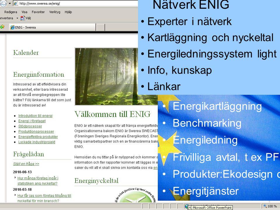 Kartläggning och nyckeltal Energiledningssystem light Info, kunskap