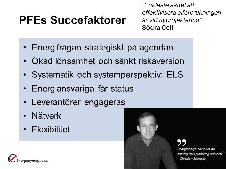 PFEs Succefaktorer Energifrågan strategiskt på agendan