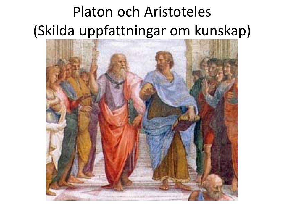 Platon och Aristoteles (Skilda uppfattningar om kunskap)