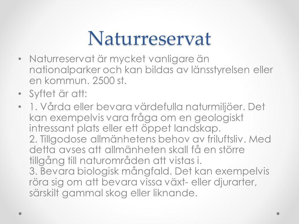 Naturreservat Naturreservat är mycket vanligare än nationalparker och kan bildas av länsstyrelsen eller en kommun. 2500 st.