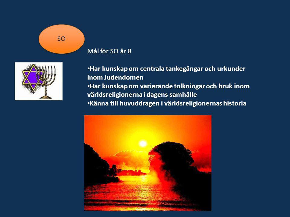 SO Mål för SO år 8. Har kunskap om centrala tankegångar och urkunder inom Judendomen.