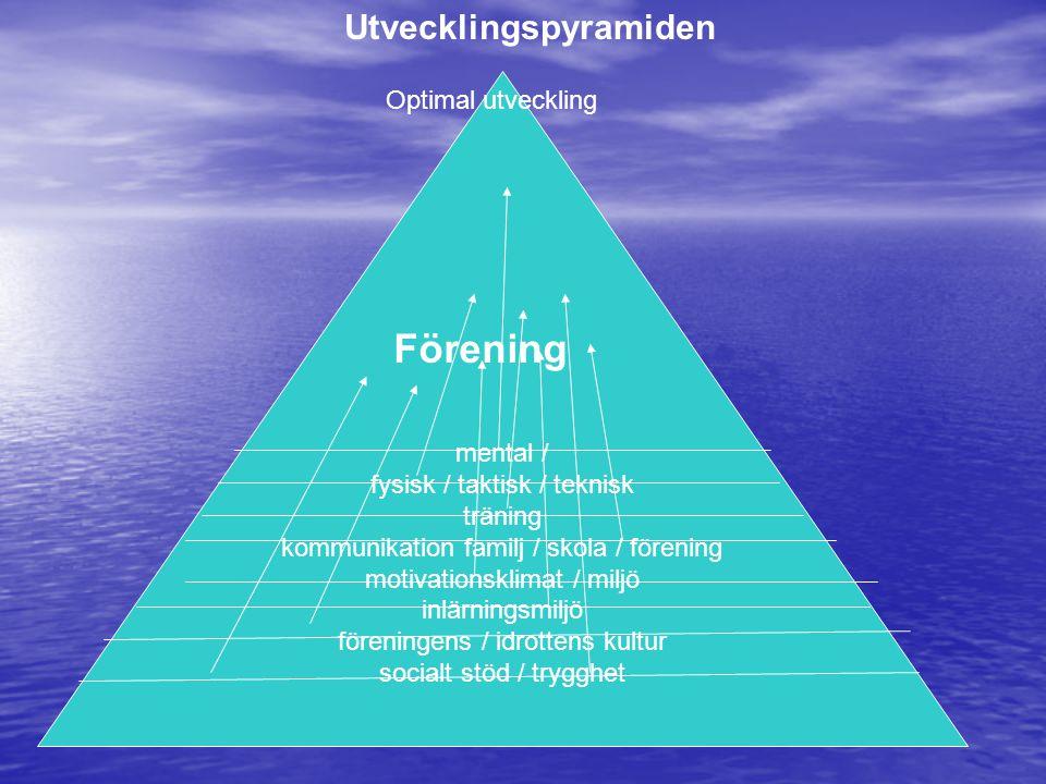 Förening Utvecklingspyramiden Optimal utveckling mental /