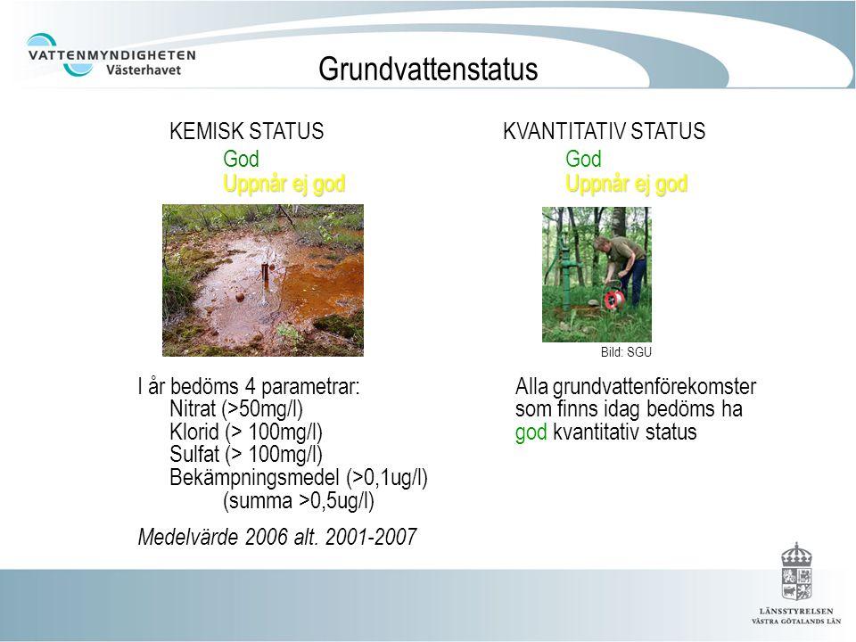 Grundvattenstatus KEMISK STATUS KVANTITATIV STATUS God God Uppnår ej god Uppnår ej god. Bild: SGU.