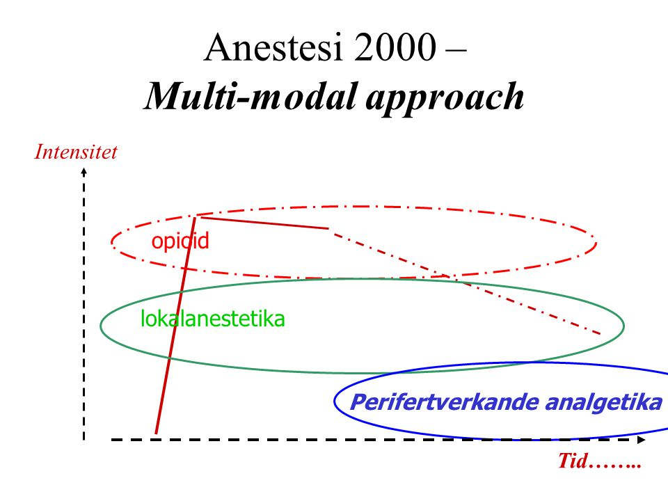 Anestesi 2000 – Multi-modal approach