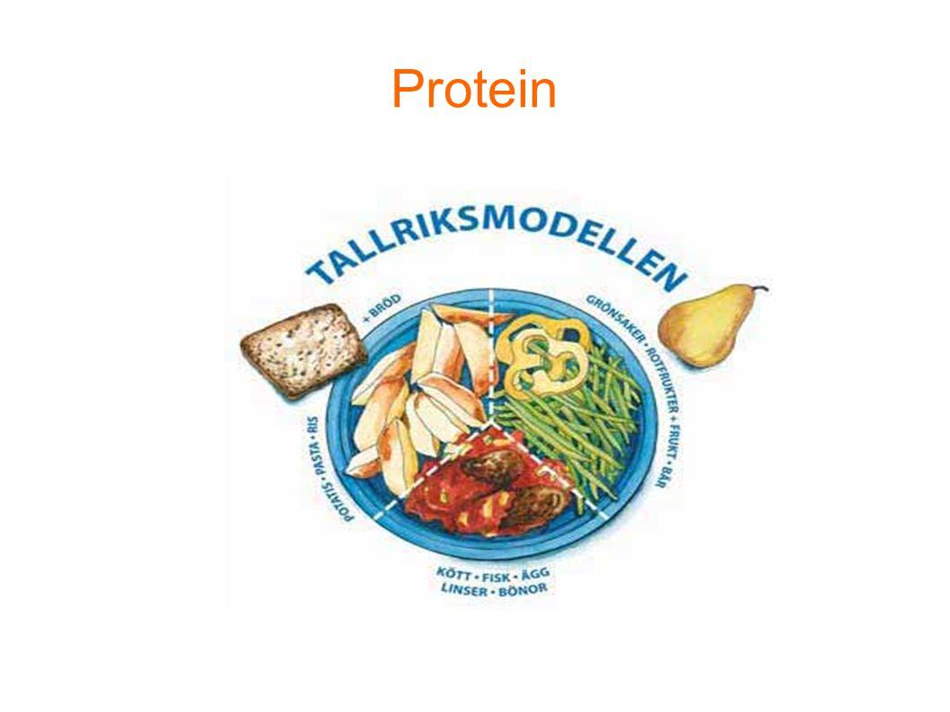 Protein Tänk tallriksmodellen vid lunch och middag. Hur lägger du upp maten på tallriken Våga testa det okända!