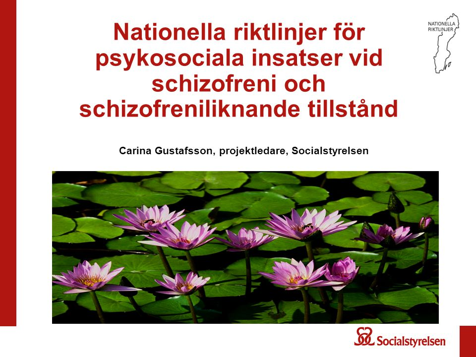 Carina Gustafsson, projektledare, Socialstyrelsen