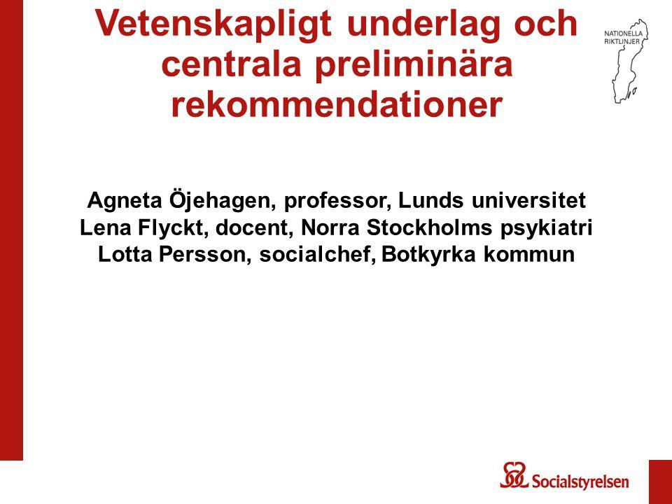 Vetenskapligt underlag och centrala preliminära rekommendationer